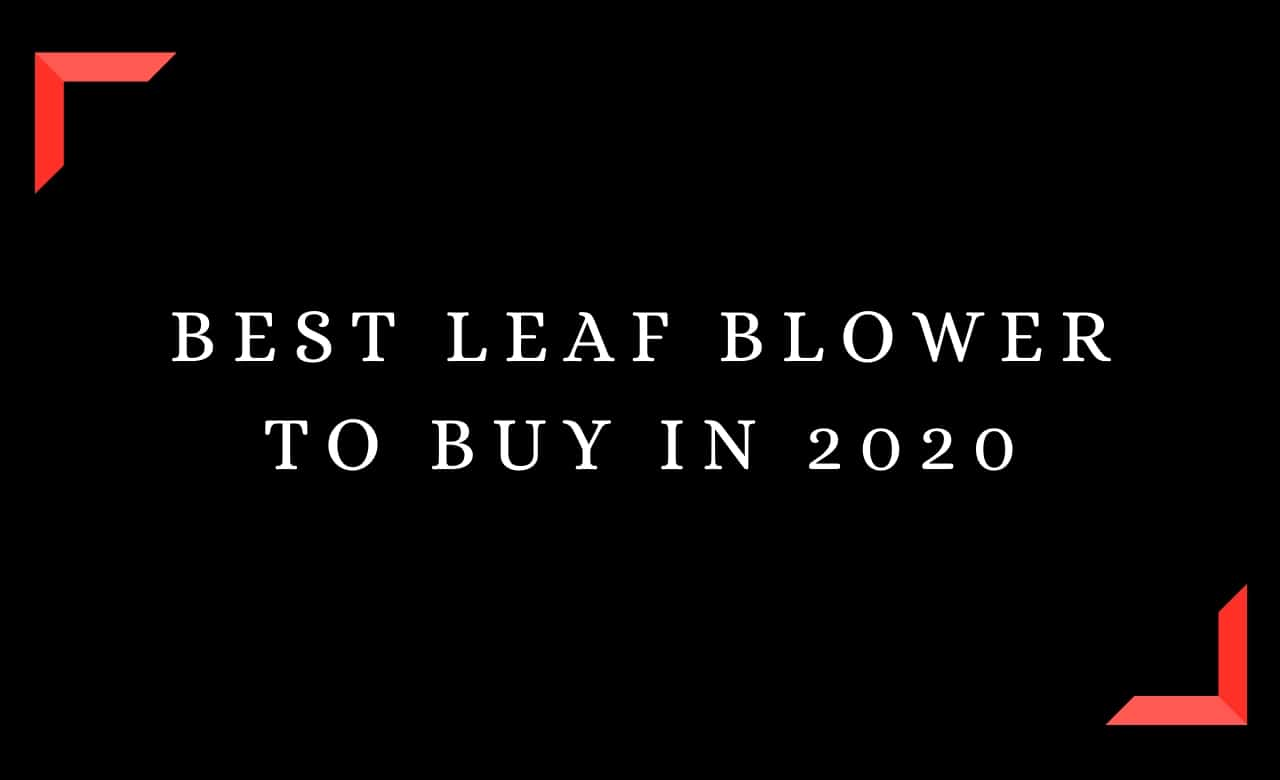 Best Leaf Blower To Buy In 2020