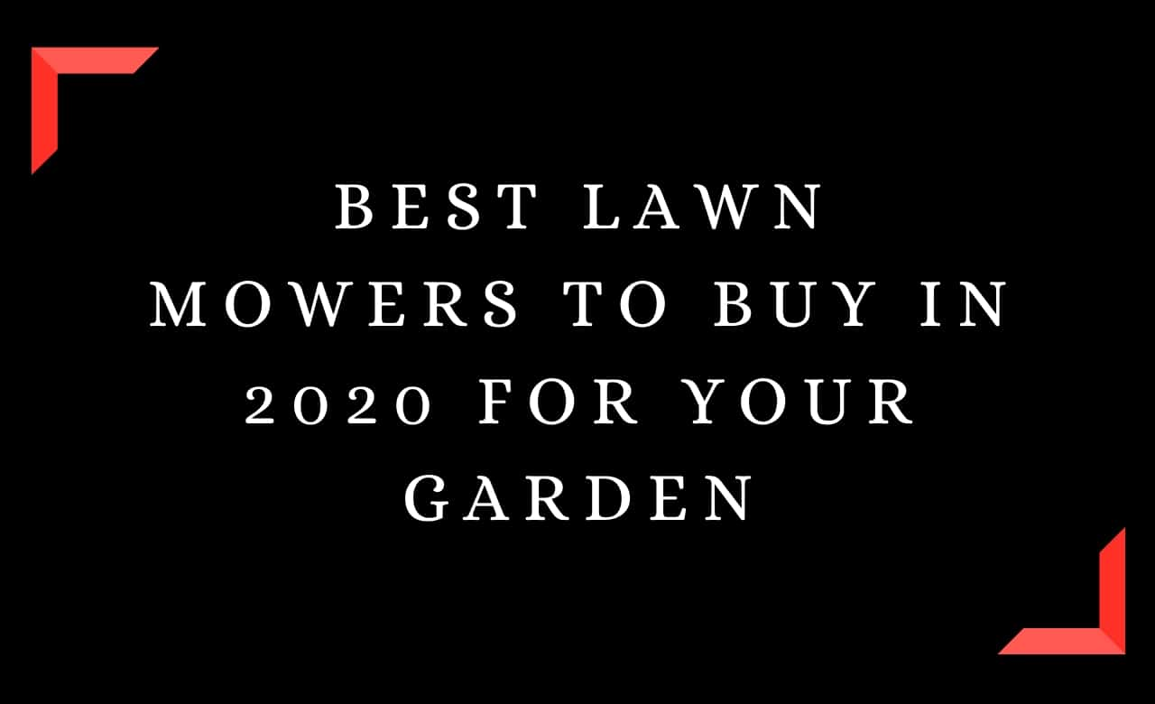 Best Lawn Mowers To Buy In 2020 For Your Garden