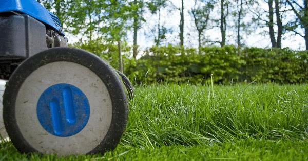 Best Mowers for Wet Grass